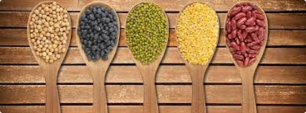 Monthly Daal and Pulses Products