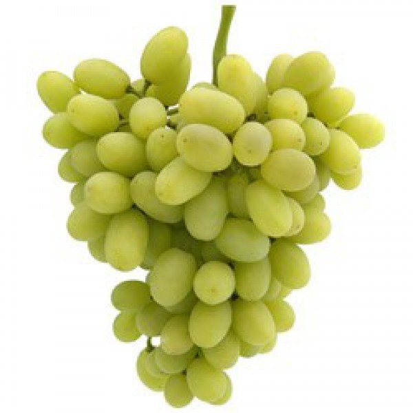Grapes Sonaka