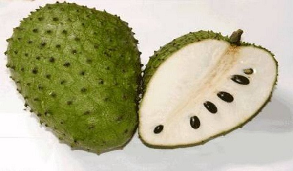 soursop graviola fruits