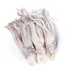 Frozen Squid with head