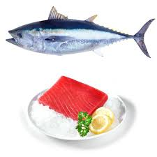 Tuna Fish Red 1 KG